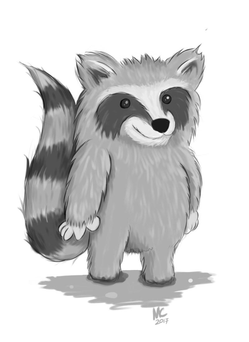 Racoon Waschbär